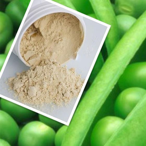 豌豆蛋白粉